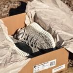 Adidas Yeezy 350 BOOST Low – Kẻ lũng đoạn thị trường giày 2015