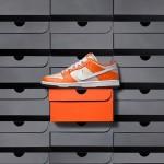 Giày NIKE SB Dunk Low Lấy Cảm Hứng Từ Chiếc Hộp Đựng Màu Cam