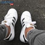 Bạn biết gì về lịch sử của huyền thoại giày – Giày adidas Superstar?