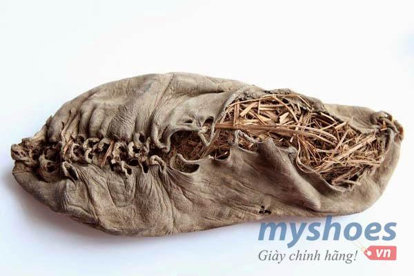 Những sự thật thú vị về dây giày bạn ít biết